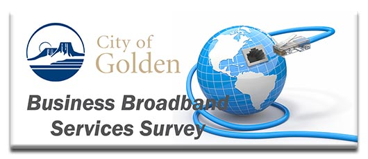 Business Broadband Survey button