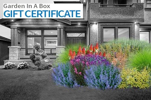 Garden in a Box Gift Certificate