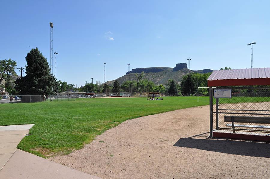 Lions Ball Park field