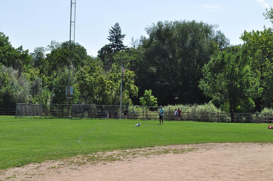 Lions Ball Park grass fields