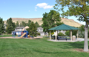 New Loveland Play Area