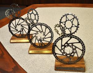 Sustainability Awards Trophies