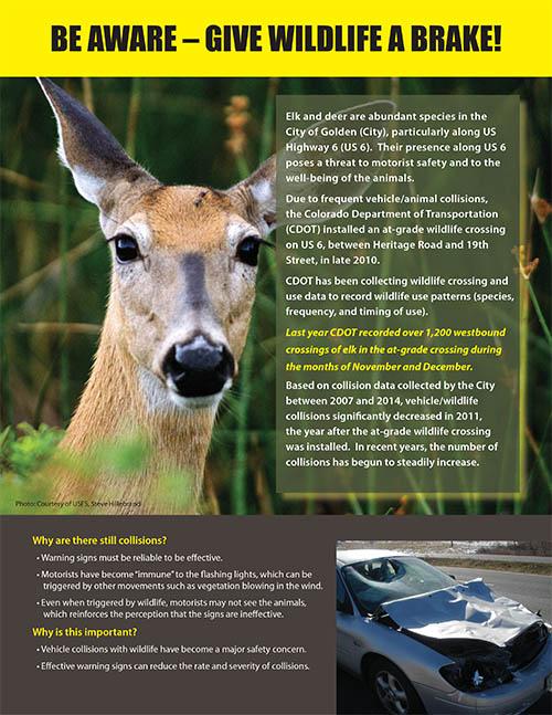 Wildlife Crossing Info