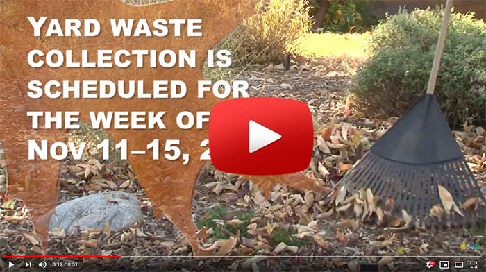A still from the Yard Waste collection video
