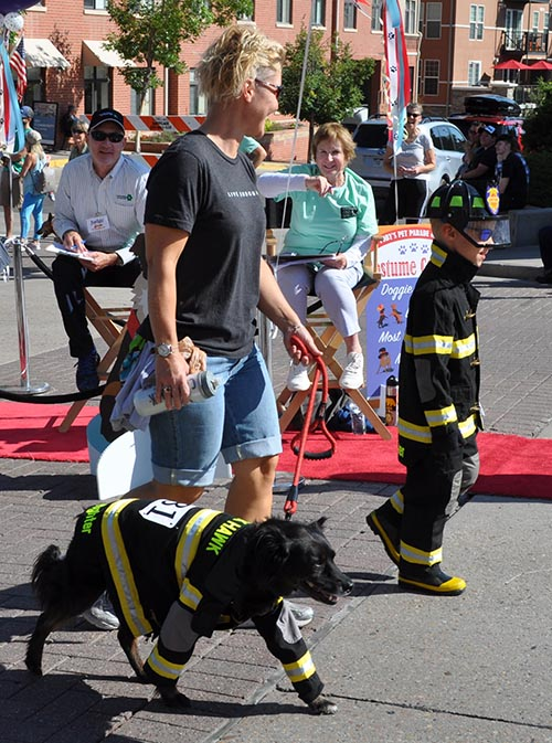 Toby's Pet Parade Fire Dog
