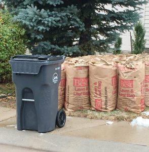 Fall Yard Waste Collection